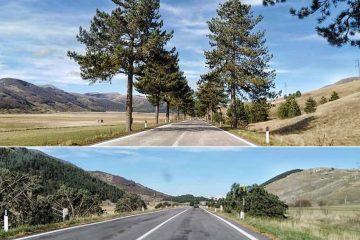 altopiano delle cinquemiglia prima e dopo il taglio dei pini